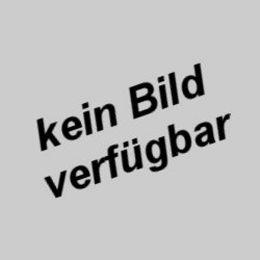 Vossloh Schwabe Vorschaltgerät EVG 1x36W T8
